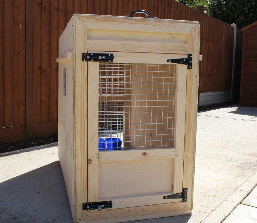 Large dog box