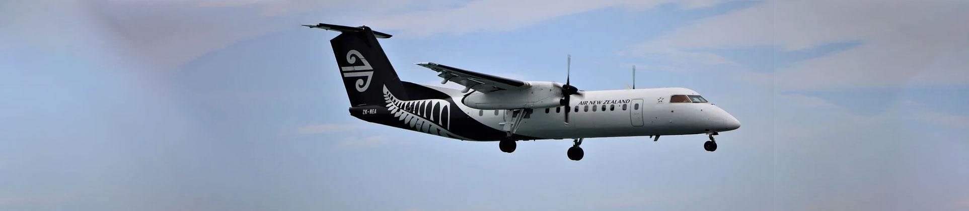 Air New Zealand Pet Travel